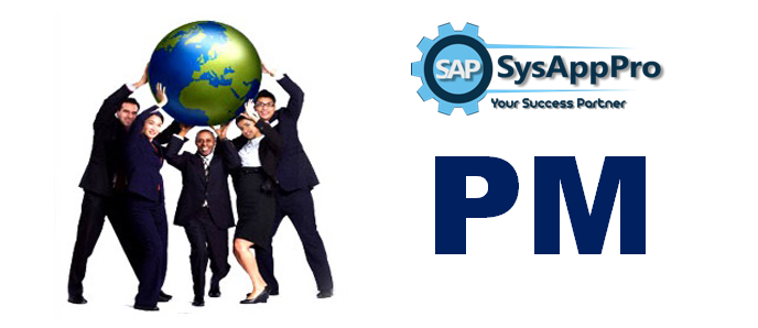 Best SAP PM training institute in Noida